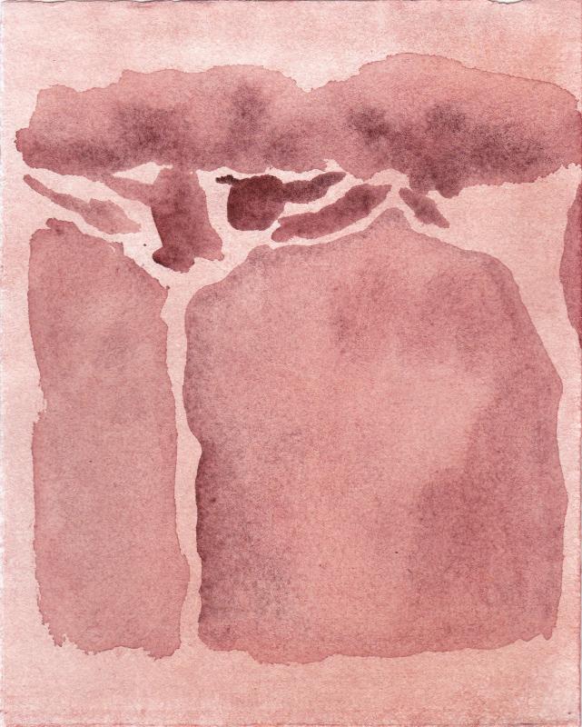 LUCAS REINER, red roman pine, 2014  watercolor on paper