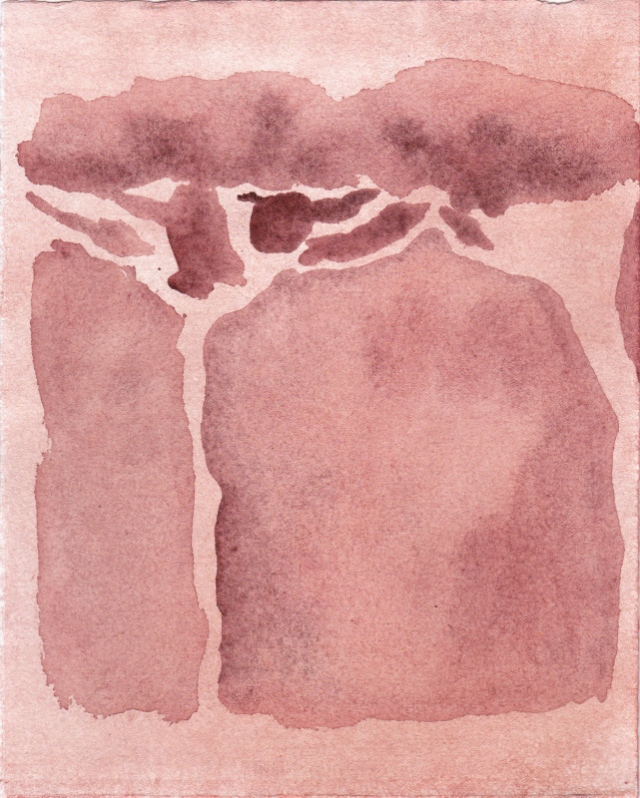 LUCAS REINER, red roman pine, 2014  watercolor on paper