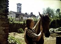 Alberto Albertini, Il cavallo della certosa, 1943