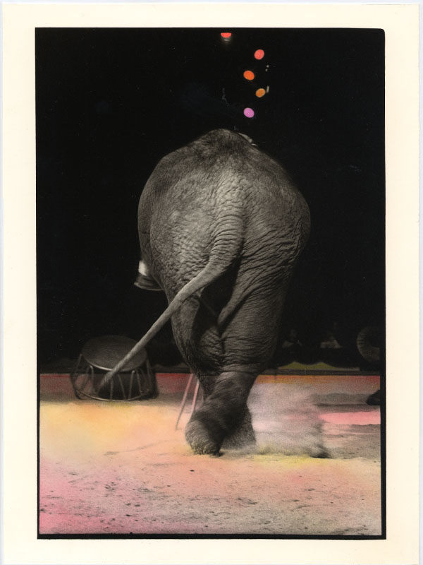 BIANCA SFORNI, CIRCUS 2, 1992   Hand colored gelatin silver prints, 23 x 17.5 cm Courtesy of the artist