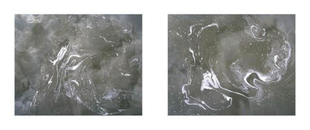 Phénomènes #10     1998      2 x (84 x 104) cm JEAN-LOUIS GARNELL
