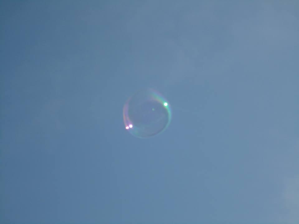 SHUCHI MEHTA, The Bubble  Photograph taken in Central Park, New York, 2013