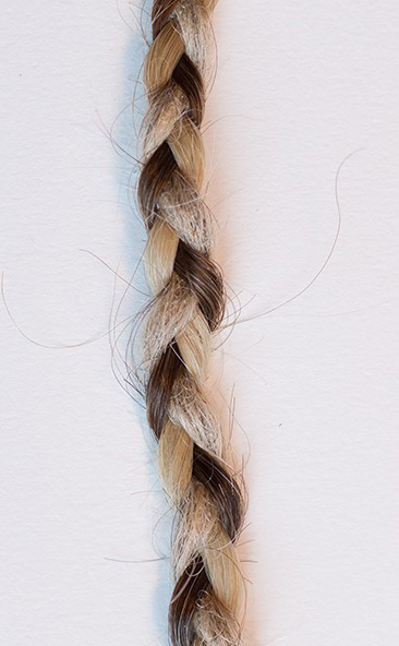CORAZON DEL SOL, three lives in one braid, 2015 Courtesy of the artist