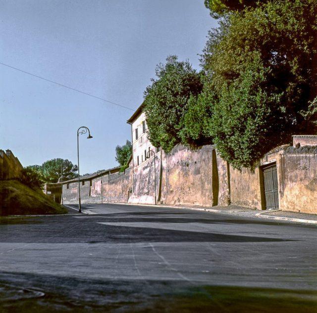 roma-5010-2-7new