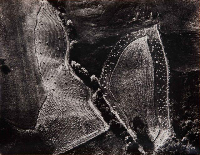 MARIO GIACOMELLI, Le fogli, 258 x 390 mm