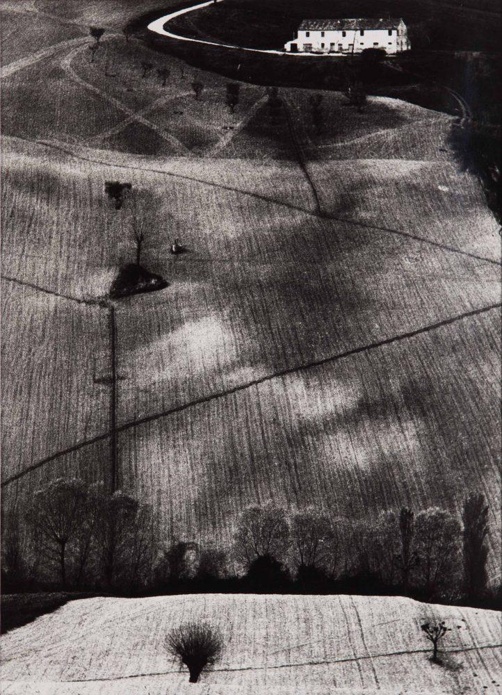 MARIO GIACOMELLI, metamorfosi della terra, 385 x 278 mm