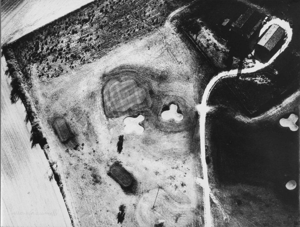 MARIO GIACOMELLI, presa di coscienza sulla natura, 300 x 405 mm