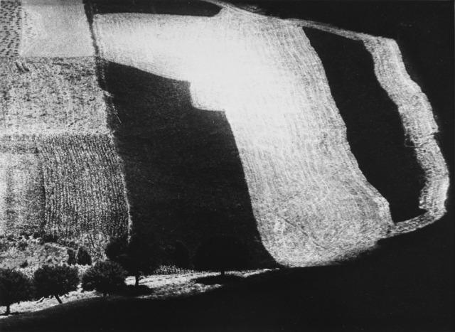MARIO GIACOMELLI, presa di coscienza sulla natura, 305 x 404 mm