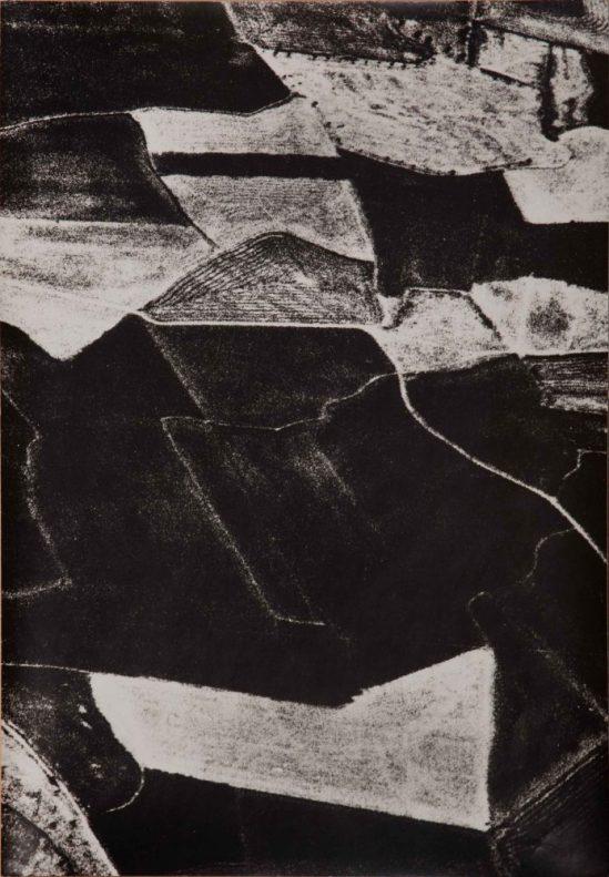 MARIO GIACOMELLI, Pesa di coscienza sulla natura, 388 x 283 mm