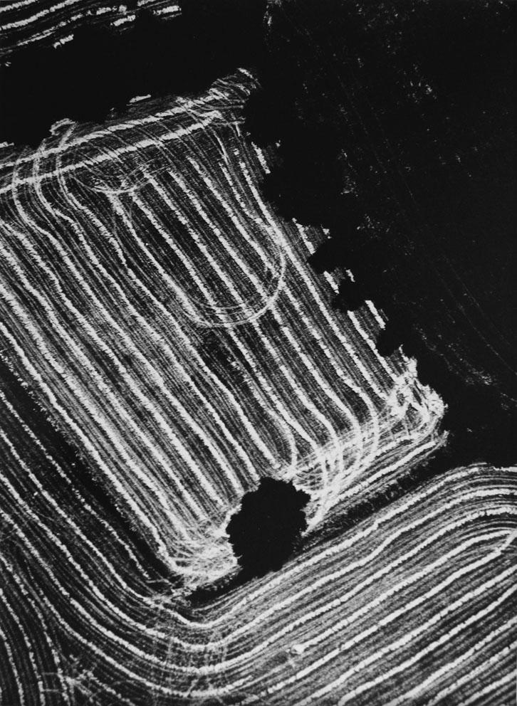 MARIO GIACOMELLI, presa di coscienza sulla natura, 392 x 298 mm