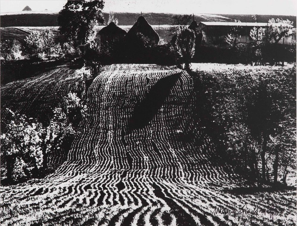 MARIO GIACOMELLI, storie di terra, 235 x 300 mm